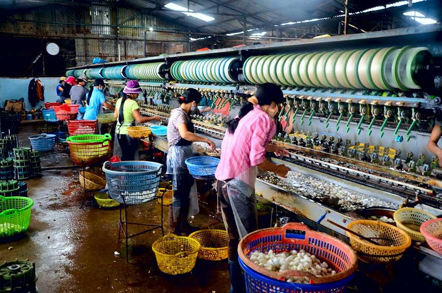silkworm making dalat
