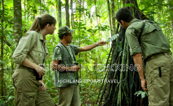 TREKKING-ELEPHANT JUNGLE